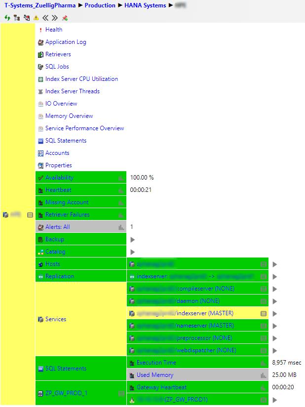 HANA-System-Service-Grid