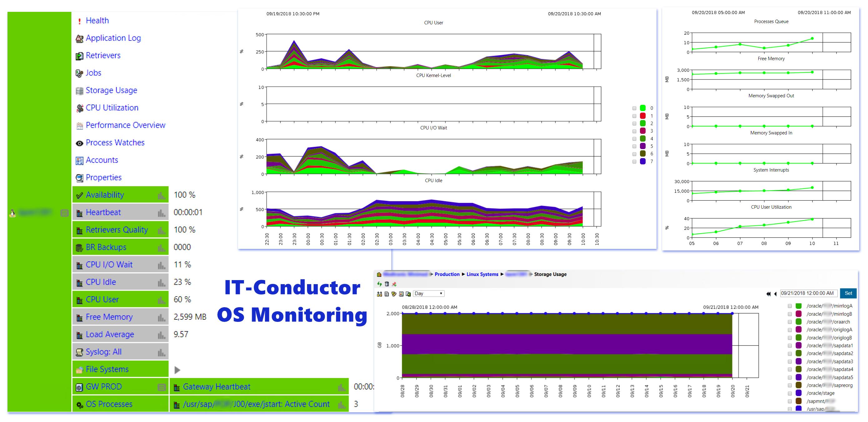 IT-Conductor SAP Basis - OS Monitoring