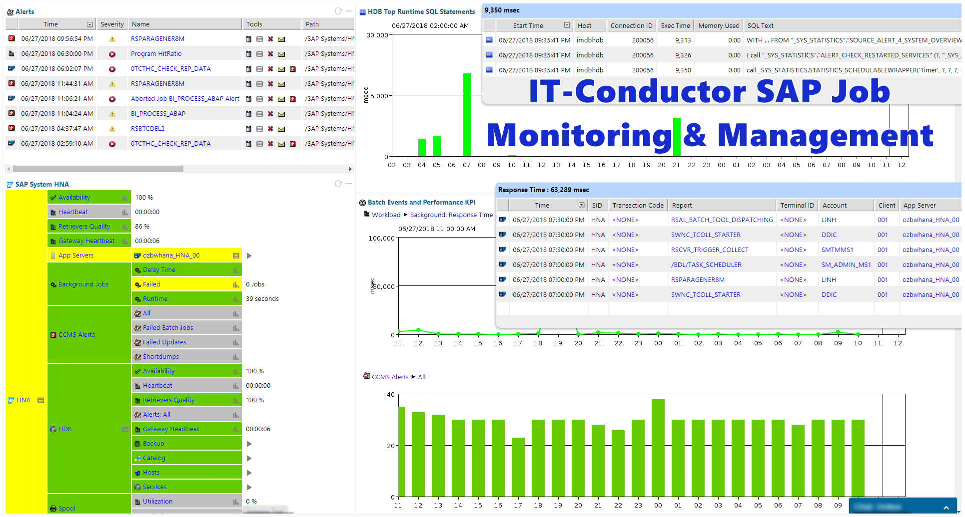 IT-Conductor SAP Job Monitoring and Management