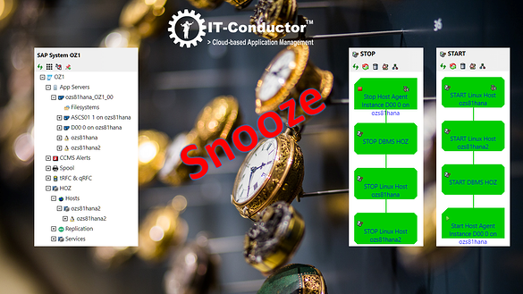 IT-Conductor Automated SAP System Snoozing