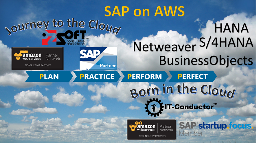 SAP on AWS Hosting: Deployment, OS/DB Migration, Managed Services