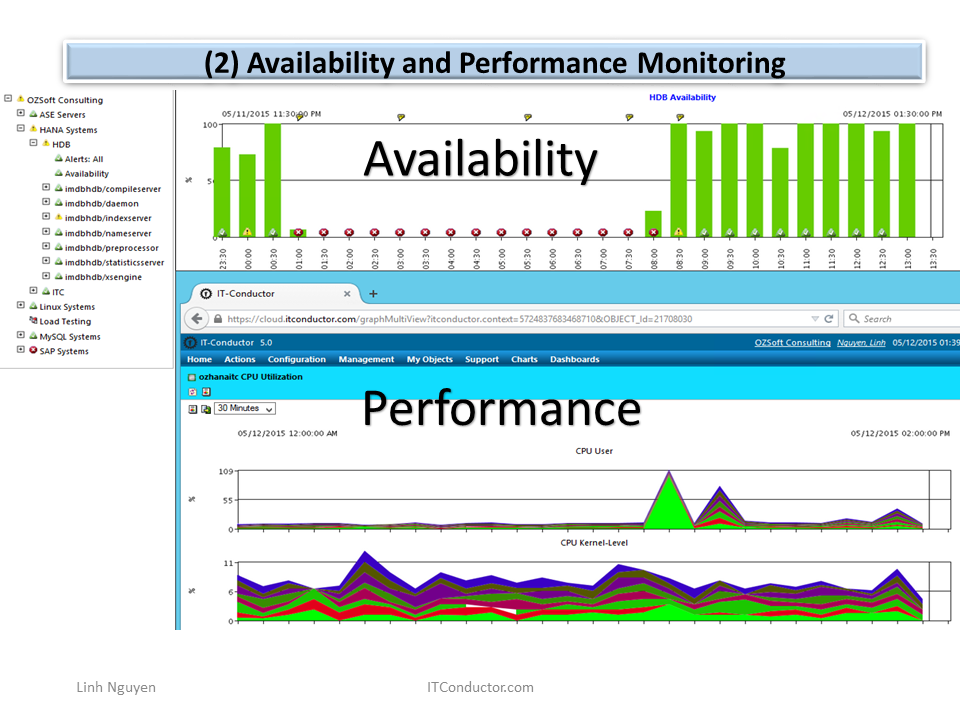 Availability and Performance Monitoring
