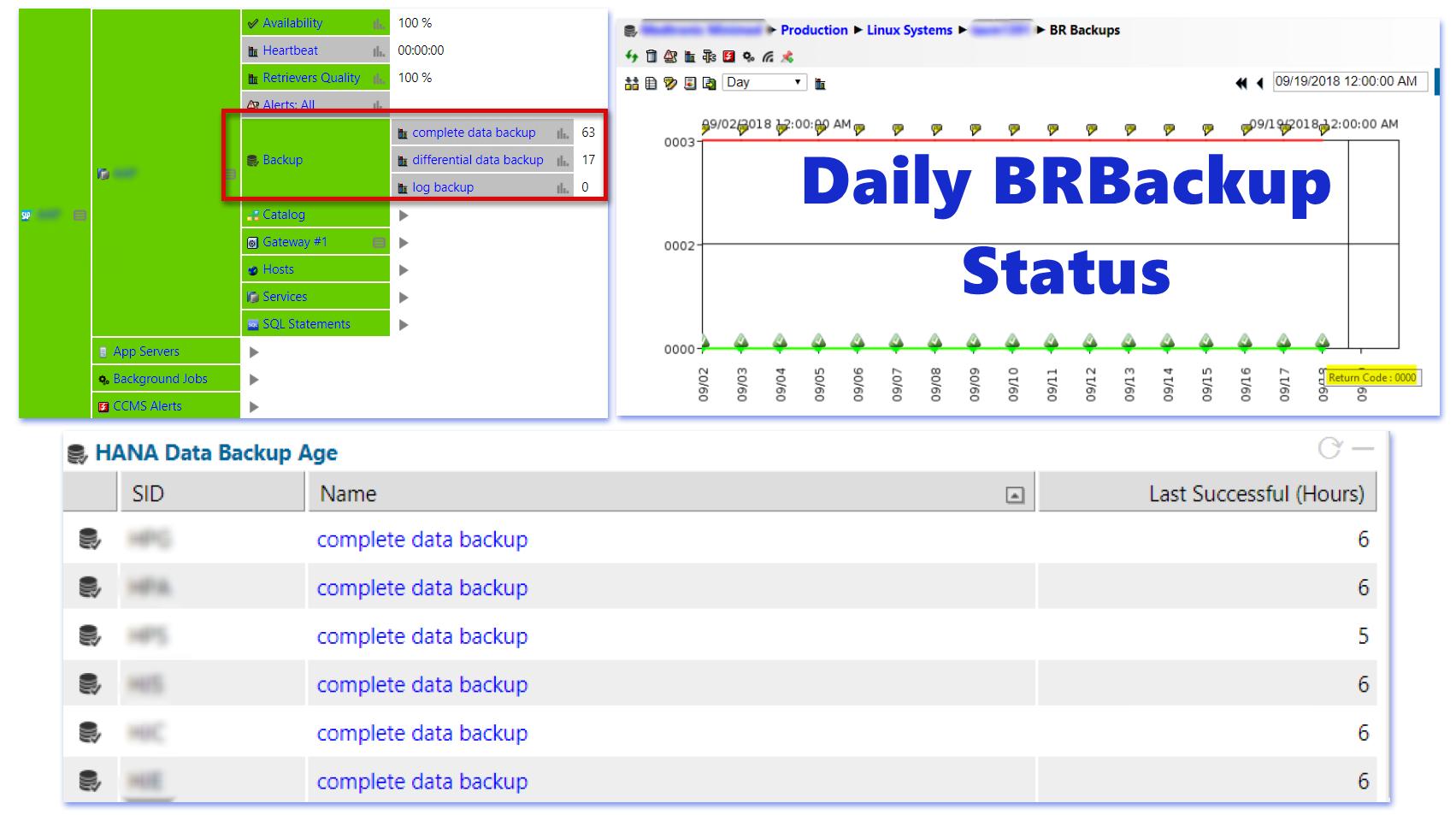 SAP Basis Monitoring for Backups